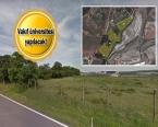 Tuzla'daki ormanlık alanın bir bölümü imara açılıyor!