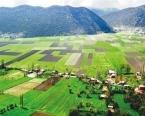 2023'e kadar 2 milyon hektar arazi kiralanacak!