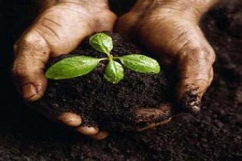 CHP, yeni tarım