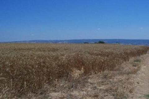 Isparta'dan 568 bin TL'ye arazi!