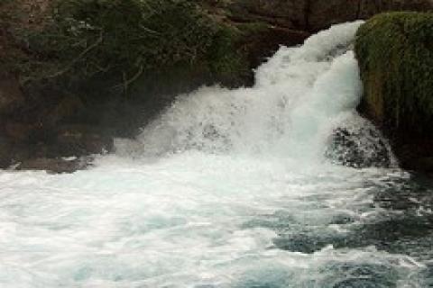 Aydın'da 4 su kaynağı, 3 yıl kiraya verilecek!