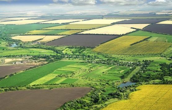 Hazineye ait tarım