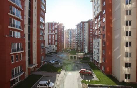 Agena Park