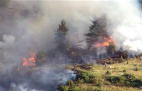 Bilecik Kösedere'de orman yangını çıktı!