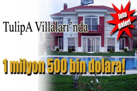 TulipA Villaları'nda 1 milyon 500 bin dolara!