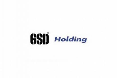 GSD Denizcilik, faaliyet raporunu ve gelir tablosunu açıkladı!