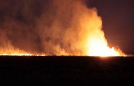 Aydın'da çıkar yangında