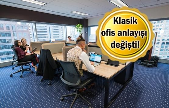 Ortak ofis kullananların