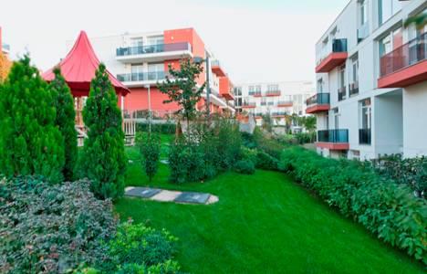 Koray Bursa
