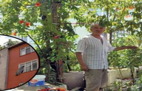 Silivri'de 4 katlı binanın çatı katına bahçe yapıldı!