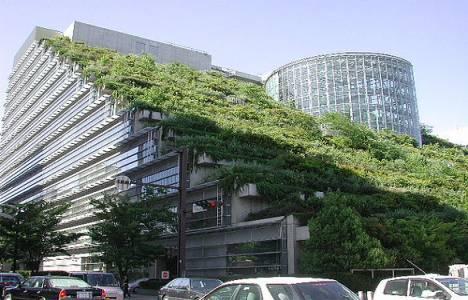 Yeşil bina kriterlerini