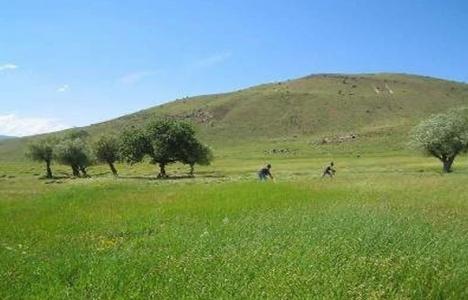 Köy arazilerinin emlak