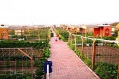 İzmir'de 6 dönümlük alanda hobi bahçeleri oluşturuluyor