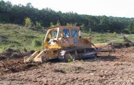 Endüstriyel ağaçlandırmada kamu-özel işbirliği geliyor!