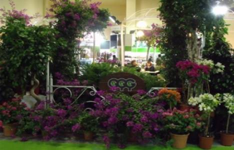 Flower Show 13 Aralık'ta İstanbul Fuar Merkezi'nde!