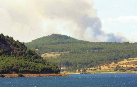 Büyük Anafarta Köyü'nün ormanlık alanında yangın çıktı!