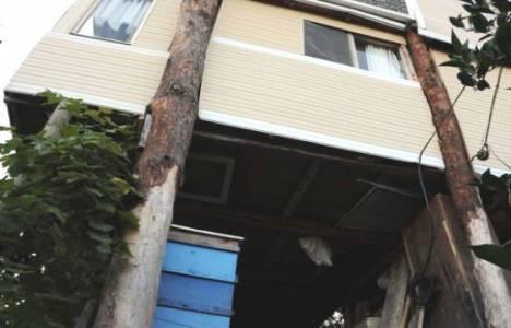 Çam ağaçlarının üzerindeki ev yıkılma tehlikesiyle karşı karşıya!