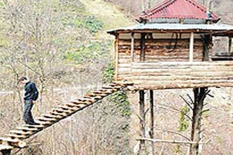 Muhammet Kuleli, Rize'de 4 ağacın üzerine 30 metrekarelik ev inşa etti!