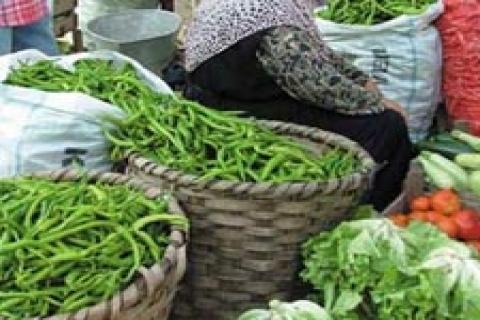 Kayseri Yaş Meyve ve Sebze Hali kiraya verilecek