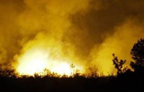 Ankara Çamlıdere'de çıkan yangında 25 hektarlık alan zarar gördü!