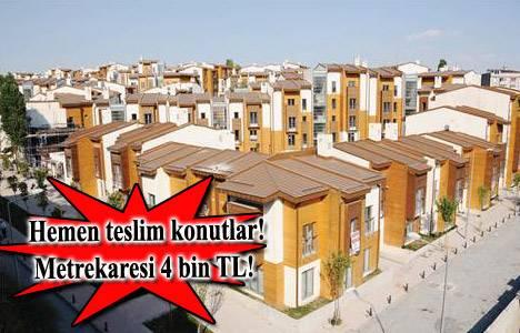 Fatih Belediyesi, TOKİ Sulukule'deki 31 konutu 22 Mayıs'ta açık artırmayla satacak!
