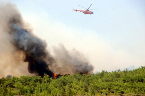 Balıkesir'deki orman yangınında