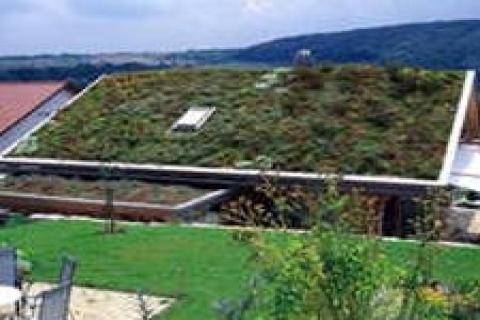 Çatılar, metrekaresi 10