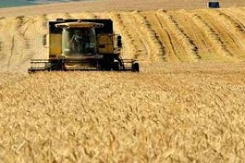 Tarım arazisine yatırım