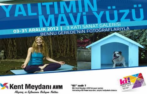Yalıtımın Mavi Yüzü sergisi Kent Meydanı AVM'de sergileniyor!