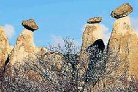 Dünya Kültür Mirası Listesi zirvesi başladı