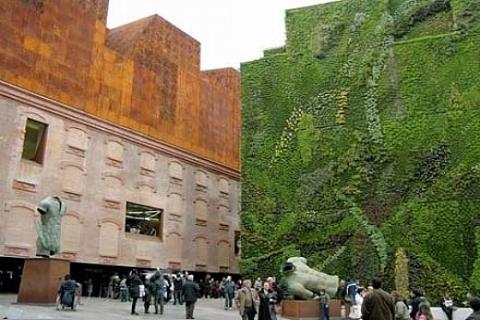 GC Mimarlık Kurucusu Şebnem Gürcün: 2012'de dikey bahçeler boy gösterecek!