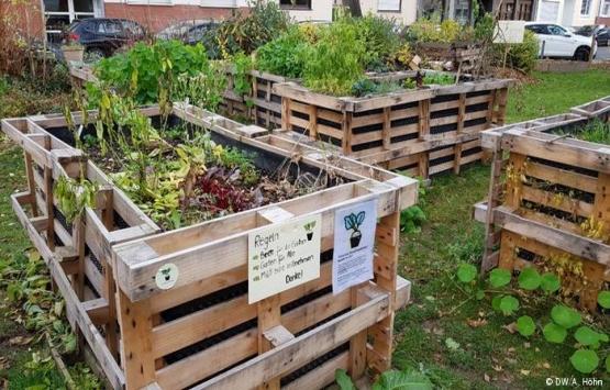 Kentsel tarım geleneksel
