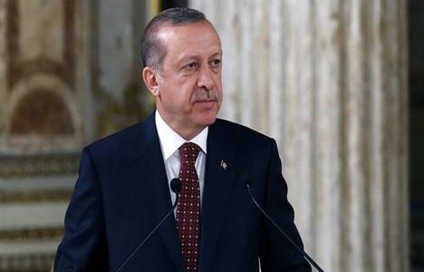 Güneydoğu Anadolu'da yeniden