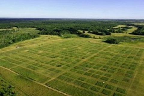 Tarım arazileri tarım dışı kullanılabilecek!