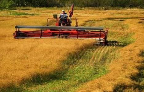 Çözüm süreciyle Güneydoğu'da tarım yatırımları artacak!