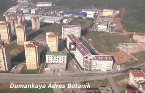 Dumankaya'nın 7 projesi