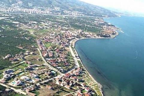 İzmir Güzelbahçe'de Dost