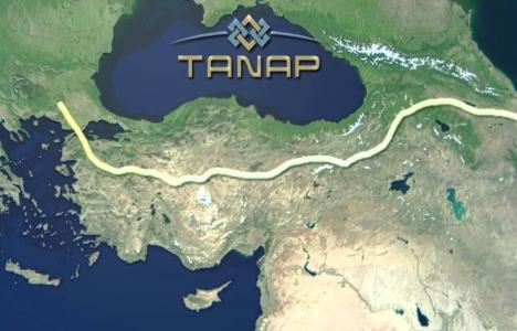 TANAP'ın maliyeti 4,5