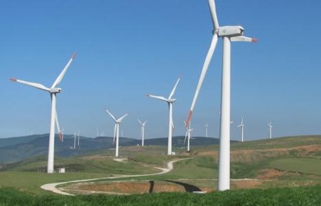 Doğanlar Holding enerji