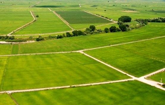 Arazi toplulaştırması 4 milyon hektar alanı geçti!