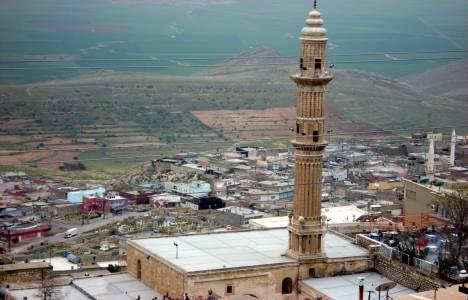 Mardin'de hazineye ait tarım arazileri satışa çıkarılıyor!