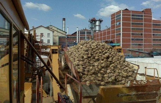 Tekirdağ'daki şeker fabrikasının satışı iptal edildi!