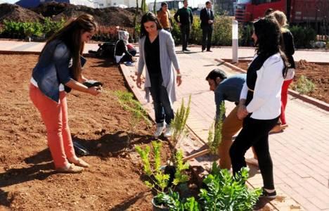 Hakkari Üniversitesi Kampüsü