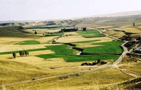 Tarım arazilerinin satışı 2014!