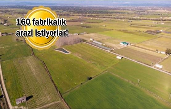 Çinliler Türkiye'de arazi avına çıktı!