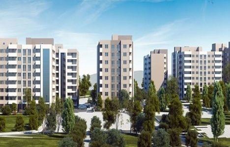 Liva Home İzmir