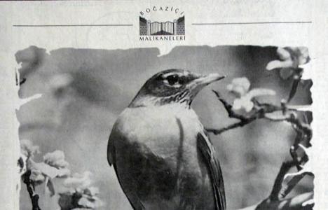 1995 yılında Boğaziçi