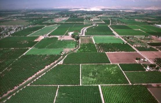Arazi Toplulaştırması Yönetmeliği