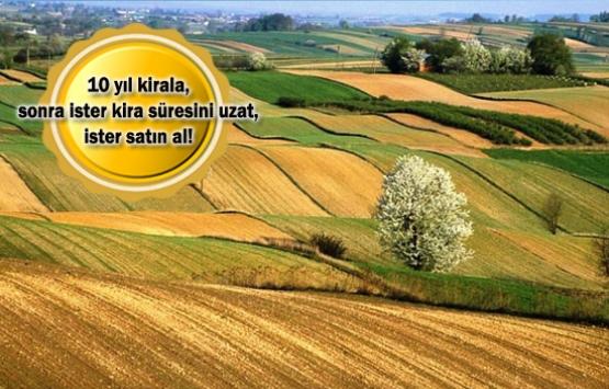 Hazineye ait tarım arazileri kiracılarına doğrudan satılabilecek!