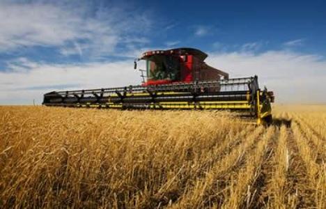 Tarımsal arazilerin mülkiyetinin